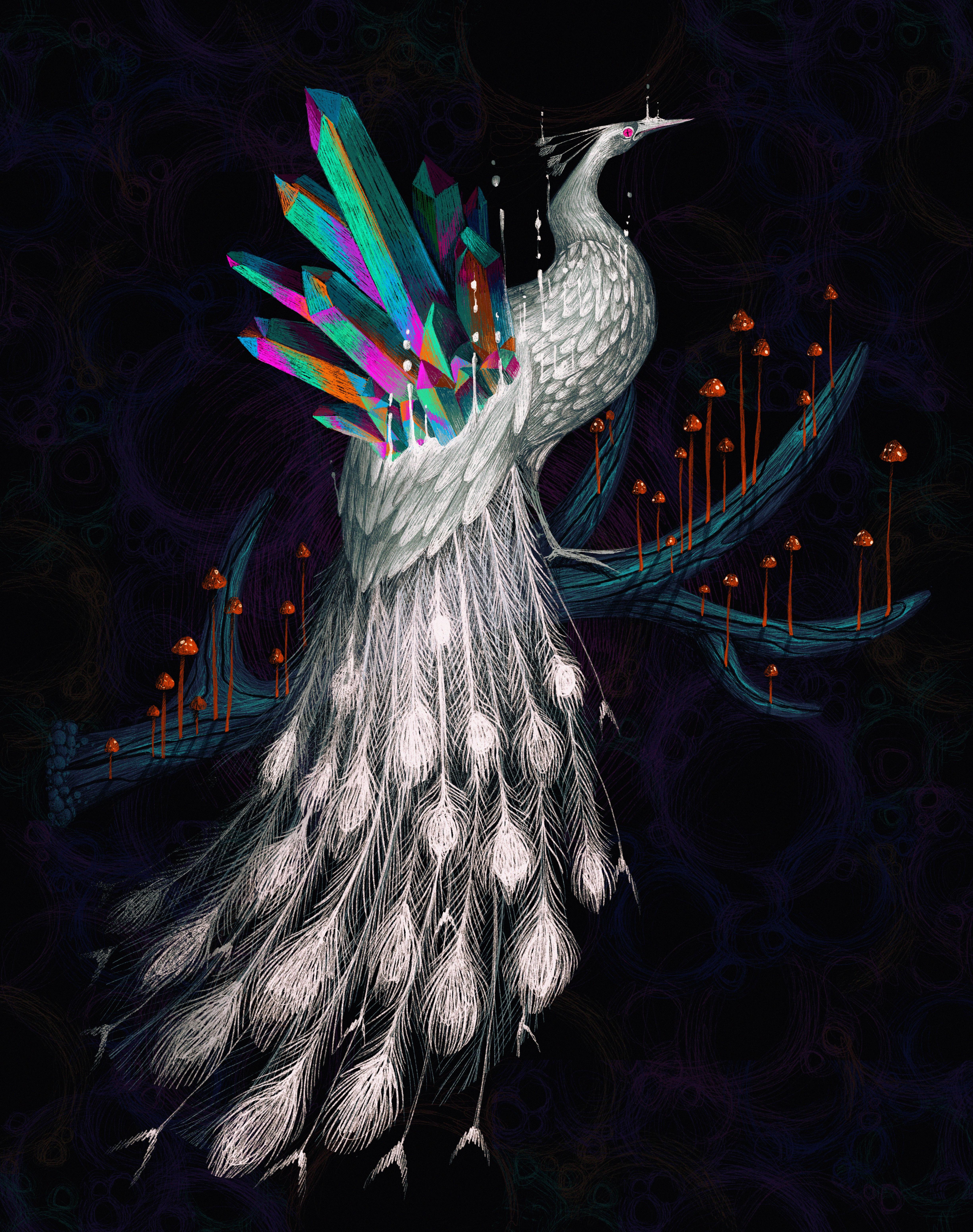 peacock-surreal-illustration